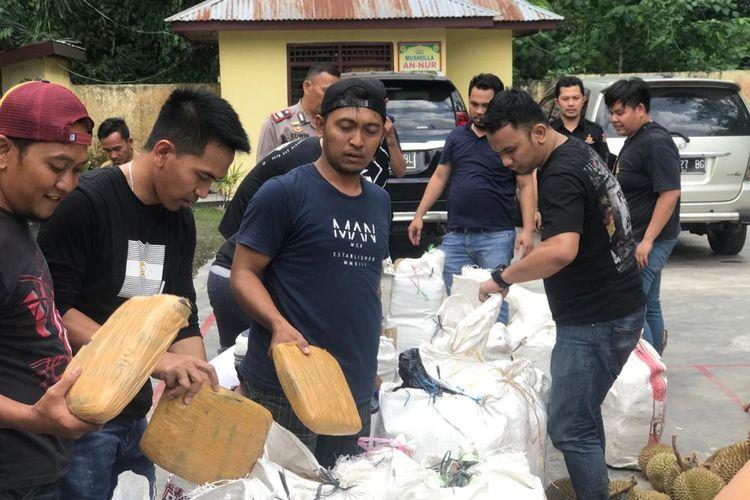 Pengungkapan kasus narkoba jenis Ganja di Mandailing Natal, Sumatra Utara