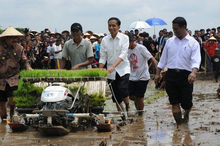 Presiden Jokowi bersama Menteri Pertanian Andi Amran Sulaiman mencoba menggunakan alsintan untuk menanam benih padi.