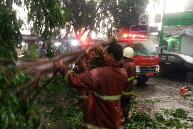 Hujan deras disertai angin sebabkan pohon tumbang di Jalan Kelapa Dua, Depok, Senin (23/12/2019).