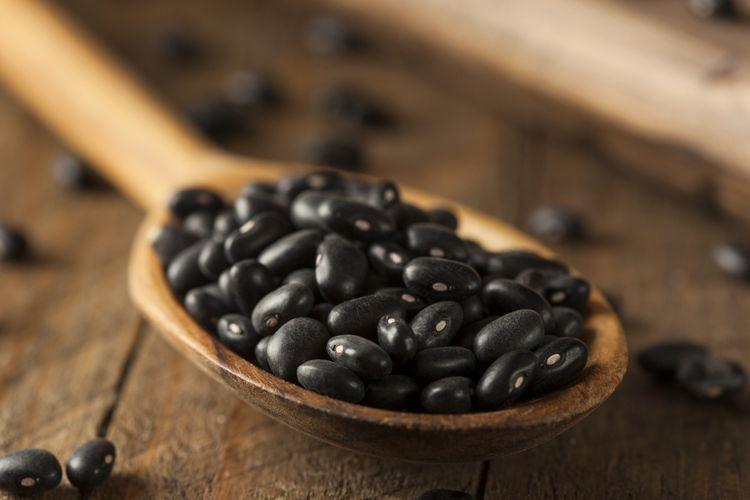 Ilustrasi kacang hitam