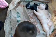Anak Kambing Ini Terlahir Mirip Gabungan Babi dan Manusia