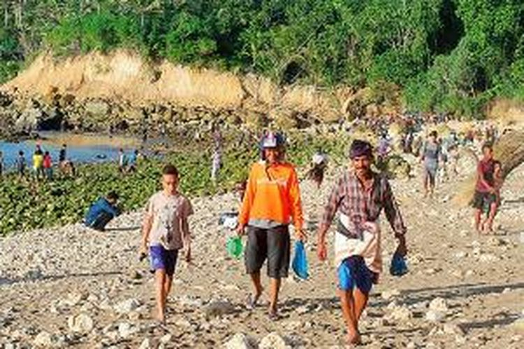 Warga Sumba, Nusa Tenggara Timur, mendatangi Pantai Wanokaka mencari cacing laut (nyale) sebagai simbol rezeki, kesejahteraan, dan keselamatan.