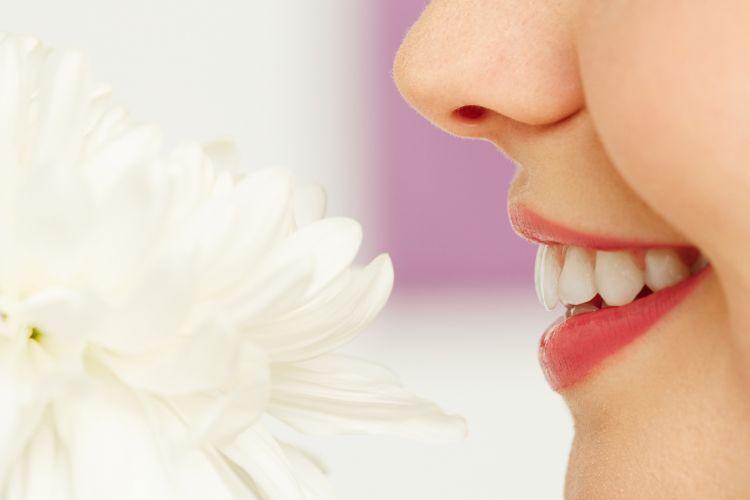 Ilustrasi mencium bunga