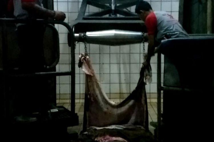 Proses pemotongan hewan di Rumah Potong Hewan (RPH) Dharma Jaya di Cilincing, Jakarta Utara, Rabu (22/8/2018).