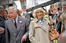 Ketika Kebun Pangeran Charles dan Camilla Diserbu Tikus