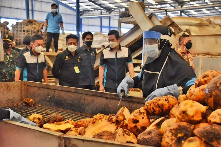 KUNJUNGI--Menteri Pertanian Syahrul Yasin Limpo didampingi Bupati Madiun, Ahmad Dawami mengunjungi PT Asia Prima Konjac, salah satu pabrik porang di Madiun, Jawa Timur, Jumat (30/7/2021).