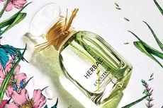 Herbae, Menghadirkan Kesegaran Alam Lewat Wewangian