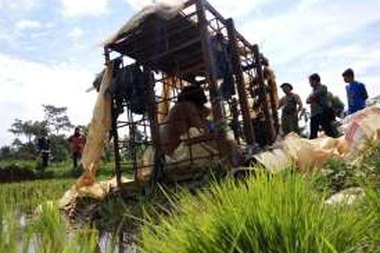 Dadan (33), penderita gangguan jiwa asal Kampung Selakaso, Desa Selawangi, Kabupaten Tasikmalaya, terpaksa dikrangkeng besi di tengah pesawahan karena sering mengamuk, Jumat (15/4/2016).