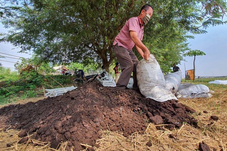 Pembuatan pupuk organik yang dilakukan oleh Gapoktan Saluyu di Cilamaya, Jabar, mitra binaan Pertagas. Dengan pupuk organik ini petani bisa hemat biaya produksi sekitar 50 persen.