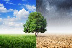 Hari Pertama PSBB Transisi, Jakarta Cerah Berawan, Bodebek Diprediksi Hujan