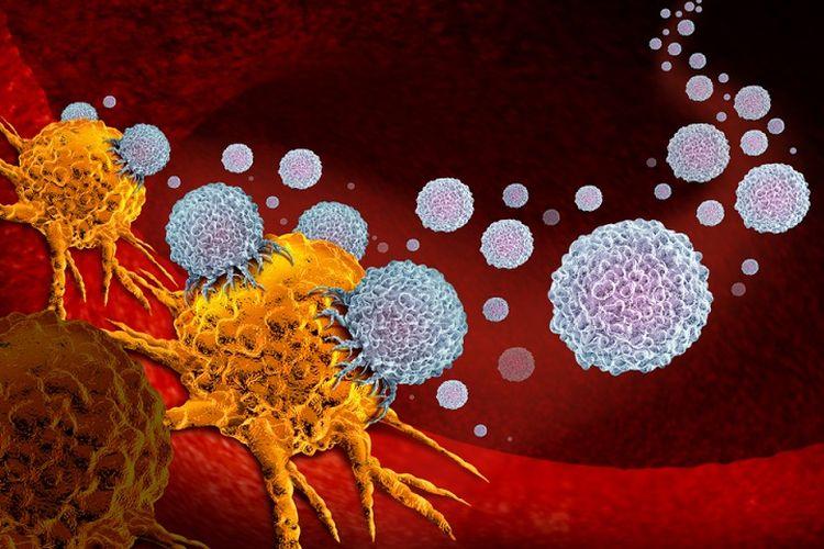 Ilustrasi pengobatan kanker paru melalui metode imuno onkologi.