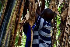 Uganda Buat UU Larang Tumbal Anak agar Orangtua Cepat Kaya, Pelanggar Dihukum Mati