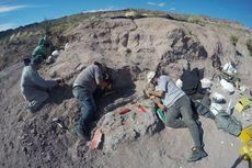 Fosil Dinosaurus di Argentina Berasal dari Keluarga Titanosaurus Tertua
