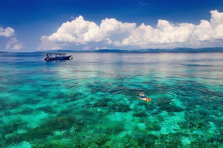 Ilustrasi seorang pria tengah snorkeling di lautan jernih dengan terumbu karang indah di Bunaken.