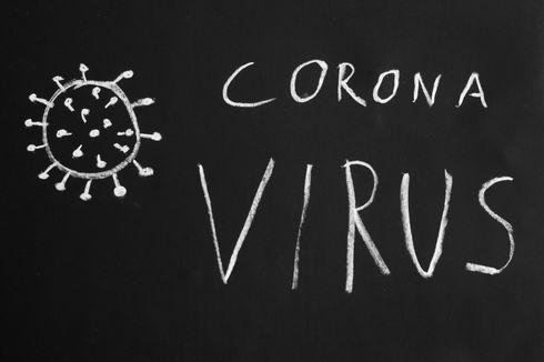 Pemprov DKI: Sebaran Virus Corona Ada di Depok dan Kemang