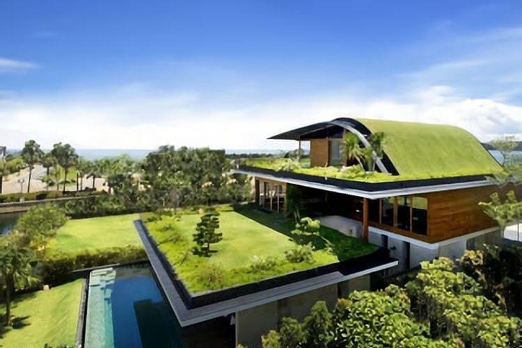 Atap hijau, salah satu upaya memperpanjang usia bumi.