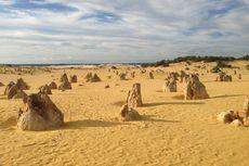 The Pinnacles, Padang Pasir di Perth yang Dipenuhi Ribuan Batu Karang