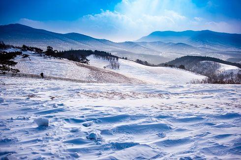 Musim Dingin di Korea, Ikuti 3 Acara Gangwon Snow Festa