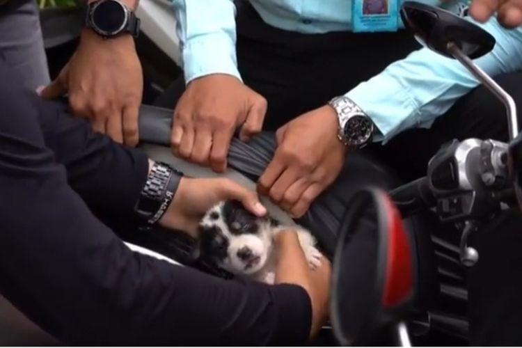 Anggota Polres Klungkung menyelamatkan anjing dari jok motor