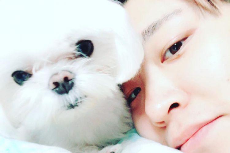 Member boyband GOT7 dan Coco anjingnya.