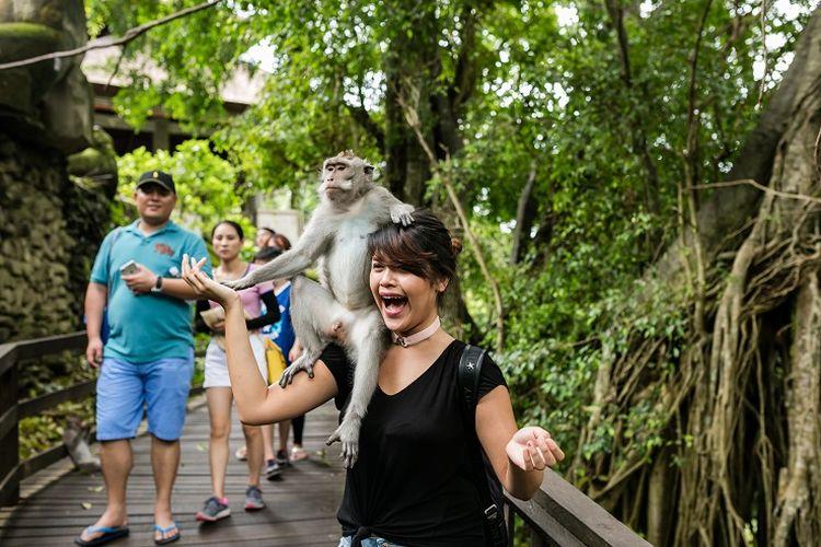 Ilustrasi Bali - Wisatawan di Monkey Forest.