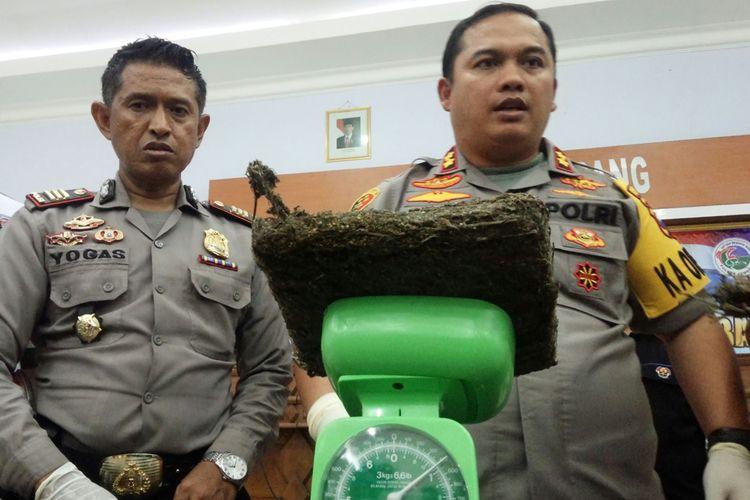 Kapolres Jombang, Jawa Timur, AKBP Bobby Paludin Tambunan (kanan), menimbang berat ganja yang disita dari rumah JP (27), di Mapolres Jombang, Senin (28/10/2019) petang. JP diduga menjadi pengedar narkoba yang dikendalikan oleh jaringan narapidana penghuni Lembaga Pemasyarakatan (Lapas).