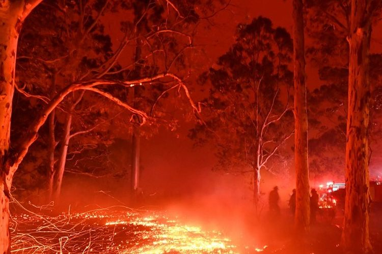 Burning embers cover the ground as firefighters (back R) battle against bushfires around the town of Nowra in the Australian state of New South Wales on December 31, 2019. - Thousands of holidaymakers and locals were forced to flee to beaches in fire-ravaged southeast Australia on December 31, as blazes ripped through popular tourist areas leaving no escape by land. (Photo by Saeed KHAN / AFP)
