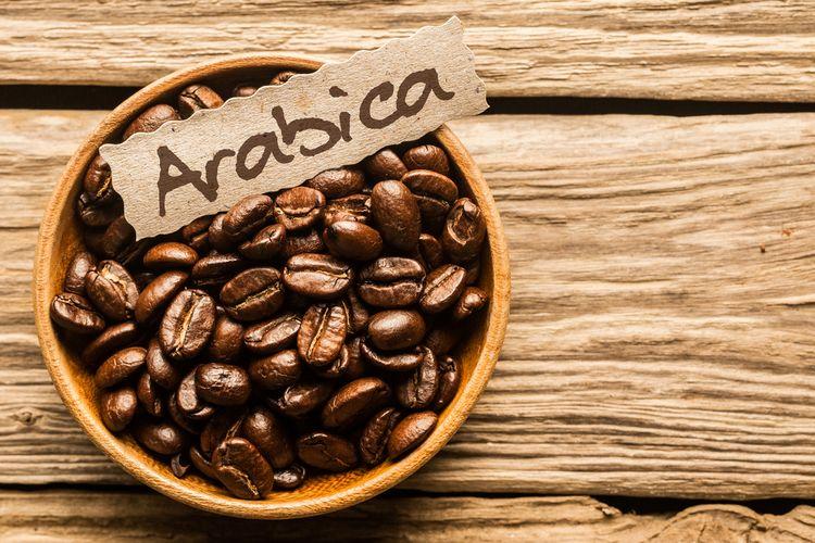 Ilustrasi kopi arabica
