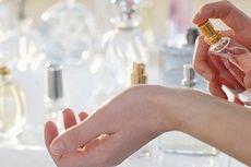 Agar Wangi Parfum Tahan Lama