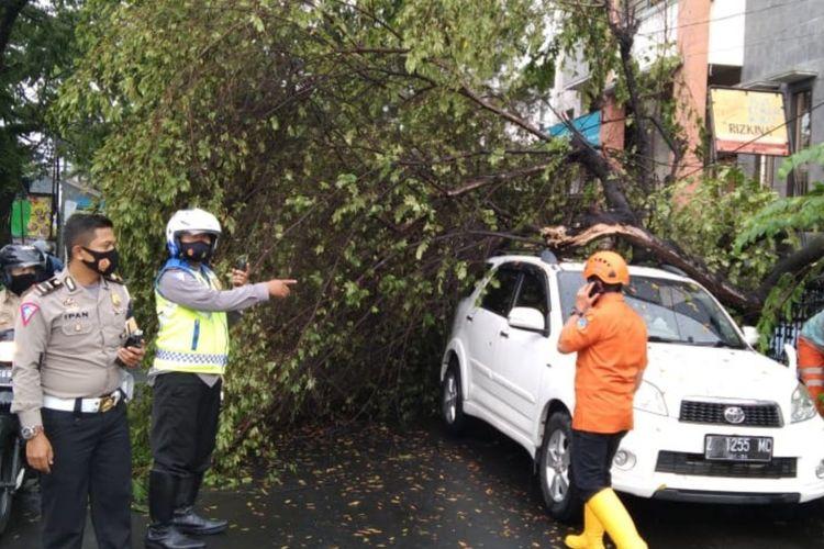 Beberapa kejadian pohon tumbang terjadi di Kota Tasikmalaya akibat cuaca buruk.