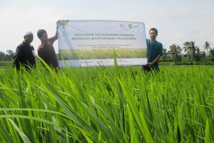 Dompet Dhuafa melalui program Social Trust Fund hadirkan program ketahanan pangan berbasis pesantren di Sukabumi.