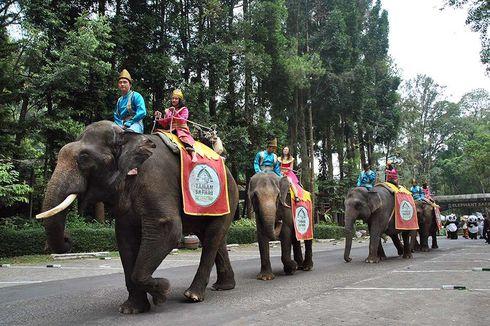 Taman Safari Masih Buka dan Ramai Dikunjungi Warga Jakarta