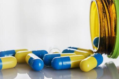 Indonesia Gudang Bahan Baku Obat Herbal
