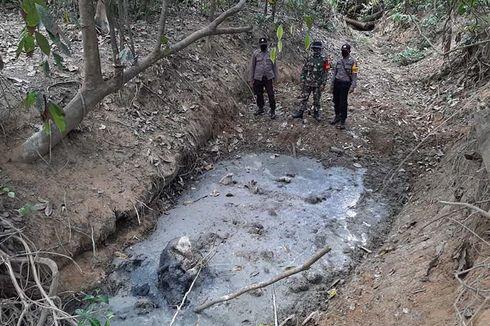 Anak Gajah Sumatera Ditemukan Mati Membusuk di Hutan, Begini Kondisinya