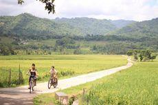 Soal Cuti Bersama 2021 Dipangkas, Ini Tanggapan Kadispar Yogyakarta
