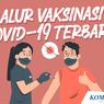 INFOGRAFIK: Alur Vaksinasi Covid-19 Terbaru