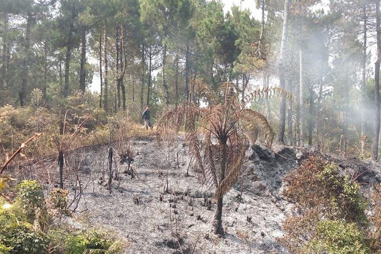 Kebakaran di lereng Gunung Slamet Dukuh Bambangan, Desa Kutabawa, Kecamatan Karangreja, Kabupaten Purbalingga, Jawa Tengah, telah berhasil dipadamkan, Jumat (13/9/2019) sore.