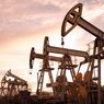 Indonesia Oil and Gas Industry Has Many Advantages: IEA