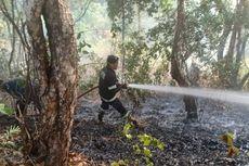 Kebakaran Semak Belukar, Warga Padamkan Api dengan Alat Seadanya
