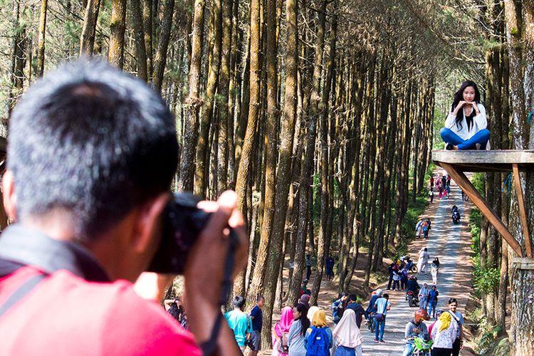 Jasa Fotografer di Wisata Pinus Kragilan, Magelang.