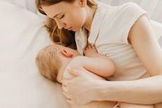 7 Asupan Kaya Nutrisi untuk Ibu Selama Masa Menyusui