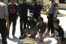 Polisi Lepaskan Tembakan Peringatan, Pelaku Sabung Ayam Kocar-kacir