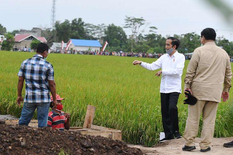 Presiden Joko Widodo (kedua kanan) didampingi Menteri Pertahanan Prabowo Subianto (kanan) meninjau lahan yang akan dijadikan Food Estate atau lumbung pangan baru di Pulang Pisau, Kalimantan Tengah, Kamis (9/7/2020). Pemerintah menyiapkan lumbung pangan nasional untuk mengantisipasi krisis pangan dunia.