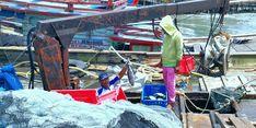 Resmi, Menteri KP Larang Penggunaan Alat Tangkap Ikan yang Rusak Ekologi Laut