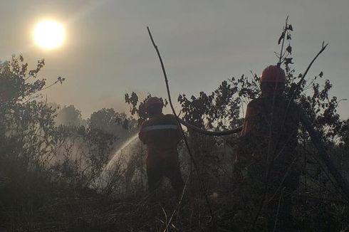 Fakta Baru Bencana Karhutla di Riau, Titik Api Bertambah hingga Tuntutan Walhi