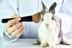 Kulit Buatan, Cara Baru Pengujian Kosmetik Tanpa Menyakiti Hewan