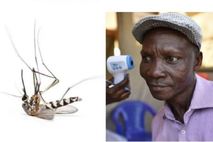 Gambra yang diambil dari www.snopes.com memperlihatkan seorang pria yang tengah diperiksa dengan gambar kiri menunjukkan seekor nyamuk. Dalam narasi yang beredar, pria itu disebut bernama Joe Rwamirama, dan mengaku bisa membunuh nyamuk dengan kentut. Nyatanya, berita tersebut adalah hoaks.