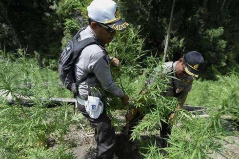 Polisi Tangkap Sopir Pengedar Narkoba di Bogor
