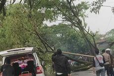 Pohon dan Tiang Listrik Tumbang di Cianjur, Jalan ke Terminal Sempat Tertutup