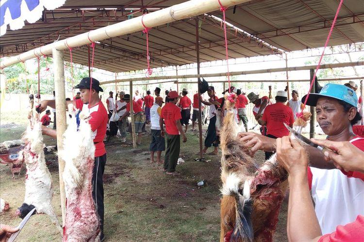 suasana dan proses pemotongan hewan kurban di Praya, Lombok Tengah,  hingga saat Selasa (13/8/2019)